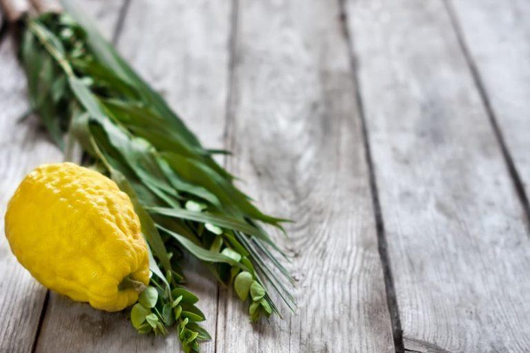 Суккот— еврейский праздник для духовного обогащения
